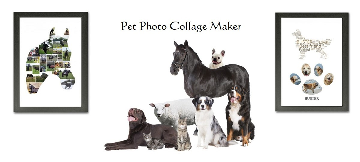 pet photo collage