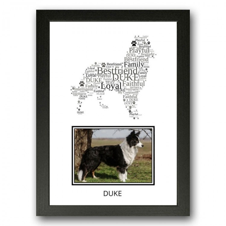 Border Collie Photo Print Gifts