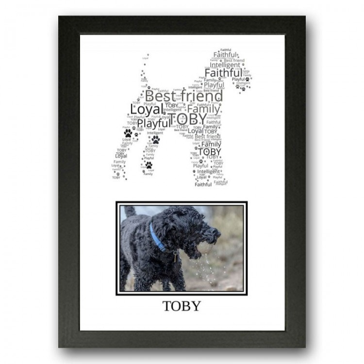 Kerry Blue Terrier Photo Print Gift