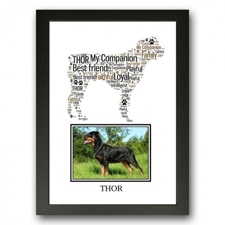 Rottweiler Photo Print Gift